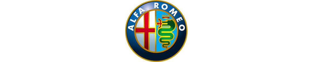 Silicone hoses and silicone cooling hose kit specific for ALFA ROMEO - International delivery dom tom