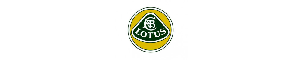 Aluminum Water Radiator for LOTUS cheap for your car here - International delivery dom tom number 1 in France