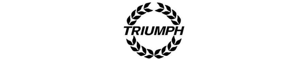 ARP reinforced cylinder head studs and screws for TRIUMPH