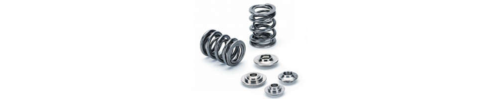 AUDI - Reinforced cups and springs