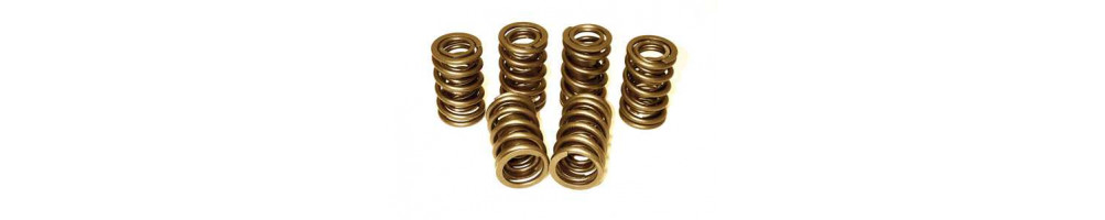 FORD - Reinforced Top Struts and Springs