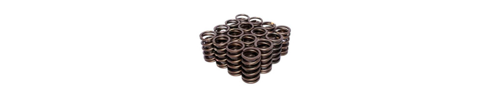 PORSCHE - Reinforced Cups and Springs